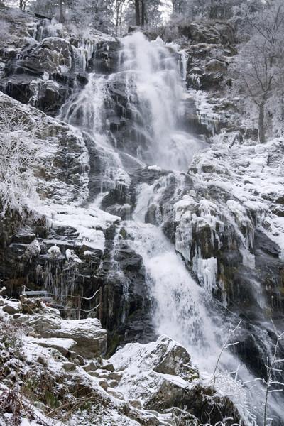 Todtnau Waterfall at winter time Stock photo © prill