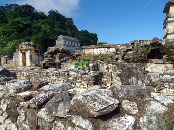 Palenque Palace Stock photo © prill