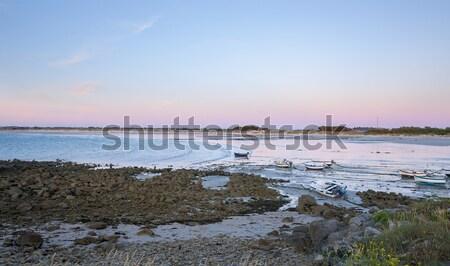 Tengerparti este idilli tengerpart víz tenger Stock fotó © prill
