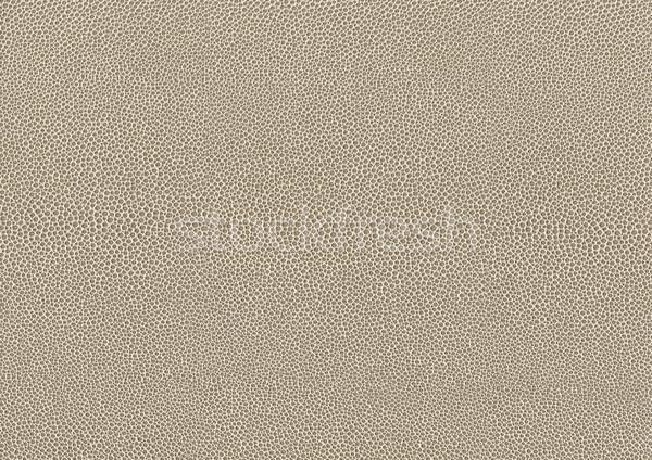 Streszczenie komórkowej full frame płowy tekstury tle Zdjęcia stock © prill