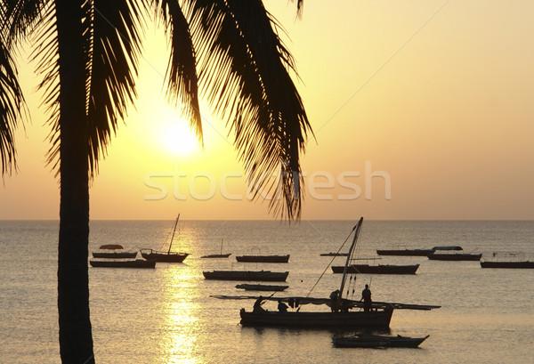 idyllic sundown in Africa Stock photo © prill