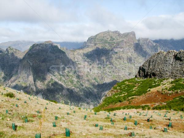 ストックフォト: 島 · マデイラ · 山 · 風景 · 旅行 · 岩