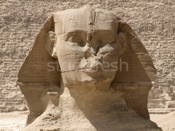 frontal Sphinx detail Stock photo © prill