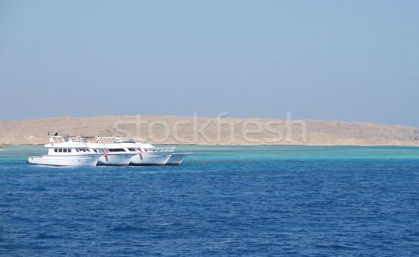 égyptien mer rouge paysages ensoleillée Photo stock © prill