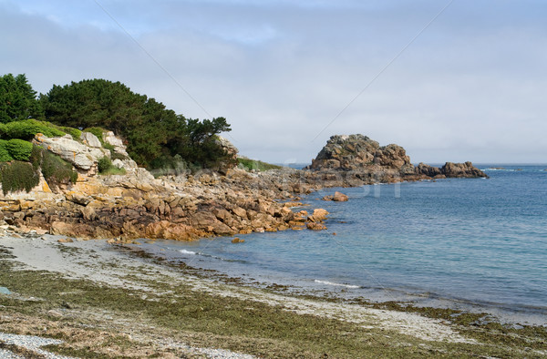 Pink Granite Coast Stock photo © prill