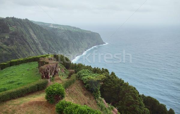 coastal scenery at the Azores Stock photo © prill