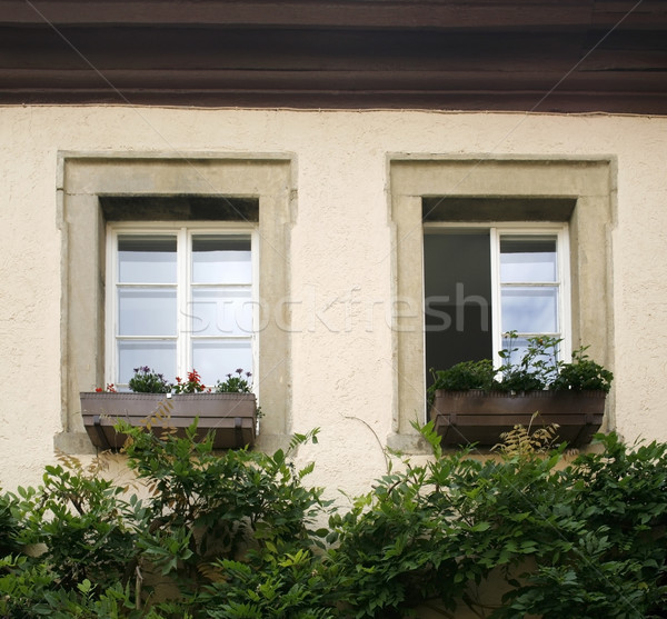 house facade detail with two old windows Stock photo © prill