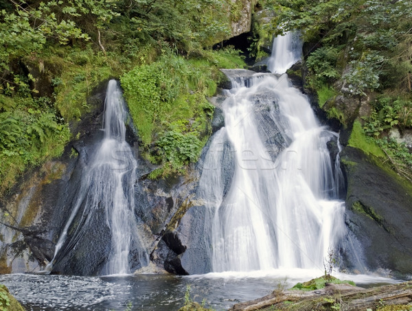 のどかな 滝 風景 黒 森林 ストックフォト © prill