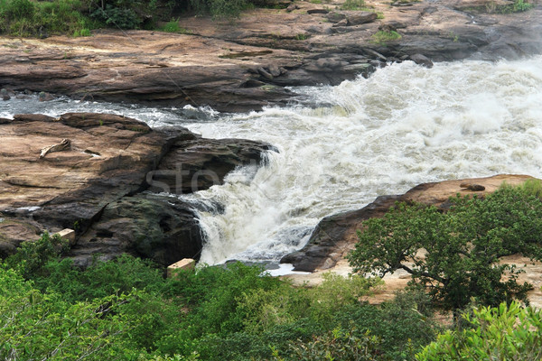 whitewater at Murchison Falls in Uganda Stock photo © prill