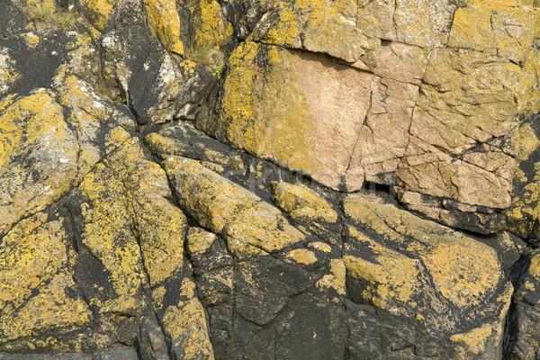 Formación de roca abadía detalle colorido bajar Foto stock © prill
