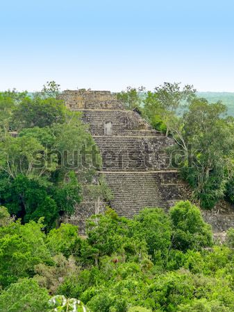 overgrown temple at Calakmul Stock photo © prill