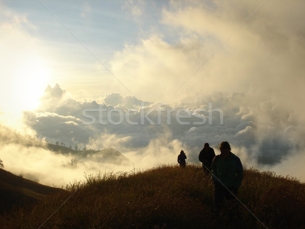 hilly grassland around Mount Rinjani Stock photo © prill