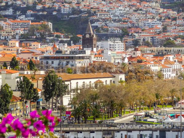 Madeira díszlet körül város sziget fa Stock fotó © prill