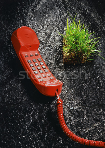 赤 電話 草 奇妙な 非現実的な 画像 ストックフォト © prill