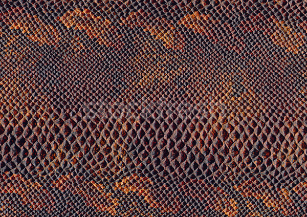 Reptiel huid oppervlak full frame abstract bruin Stockfoto © prill