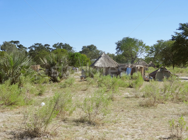 indigenous village at the Okavango Delta Stock photo © prill