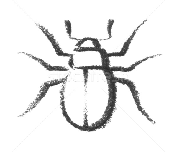 sketched beetle Stock photo © prill