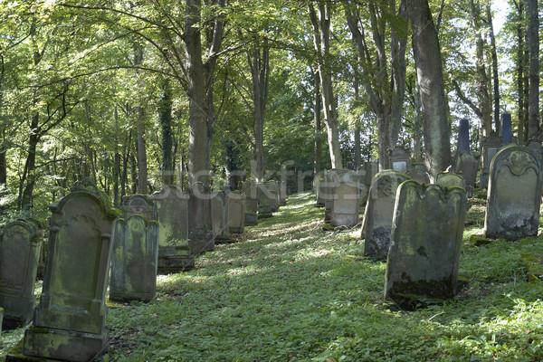 old gravestone rows Stock photo © prill