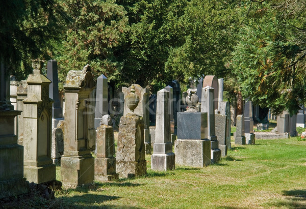 jewish graveyard in sunny ambiance Stock photo © prill