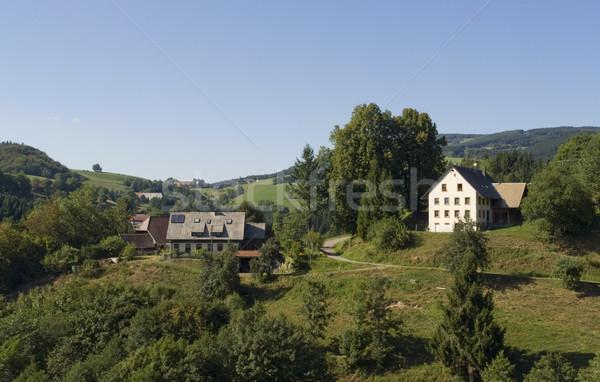 sunny Black Forest scenery Stock photo © prill