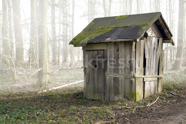old wooden shack Stock photo © prill