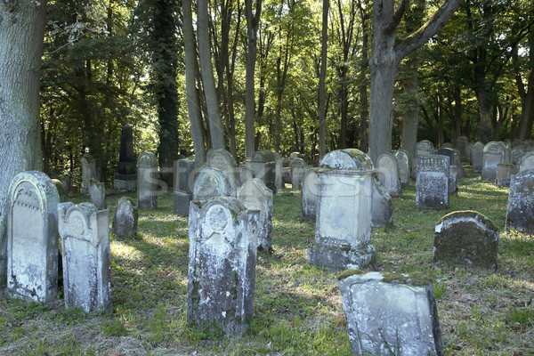 part of a old jewish graveyard Stock photo © prill