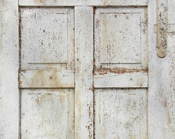 old wooden door detail Stock photo © prill