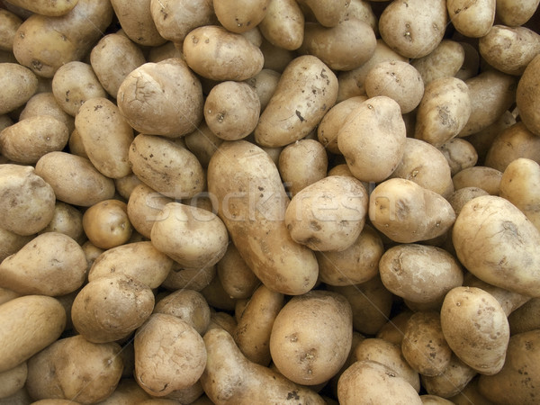 full frame potatoe background Stock photo © prill
