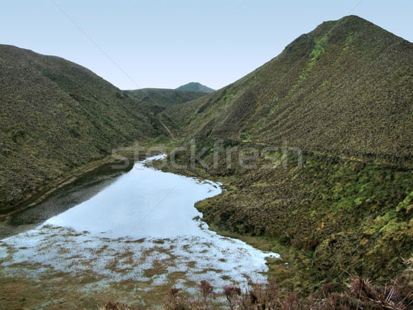 hilly scenery at the Azores Stock photo © prill