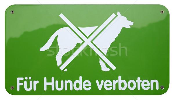 Verde cani segno studio fotografia Foto d'archivio © prill