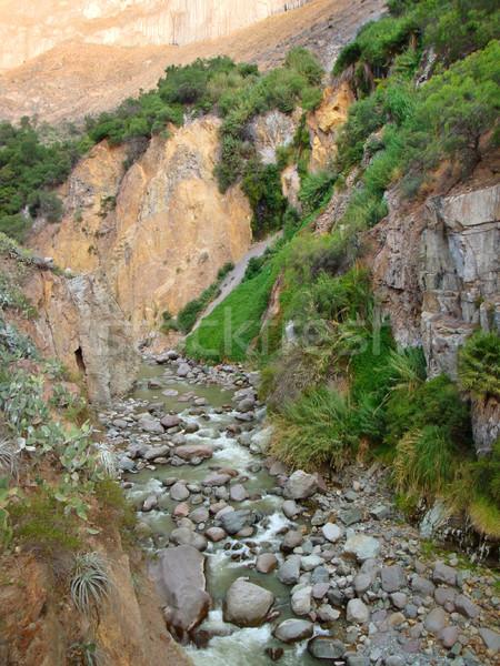 Vegetation Canyon Detail Peru Südamerika Wasser Stock foto © prill