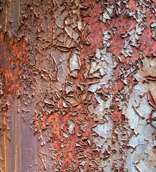 rusty painted background Stock photo © prill