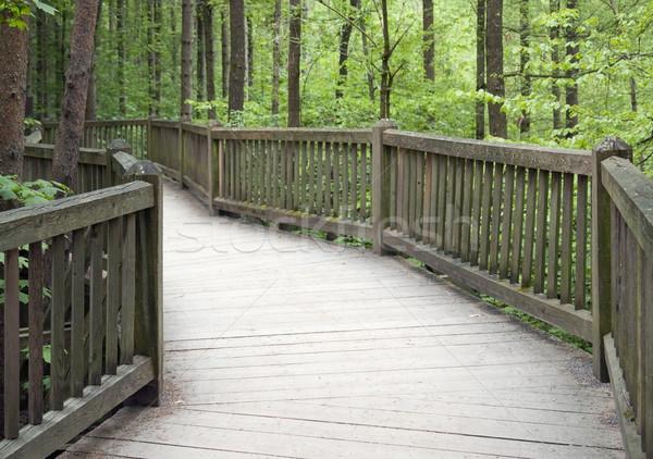 wooden bridge Stock photo © prill