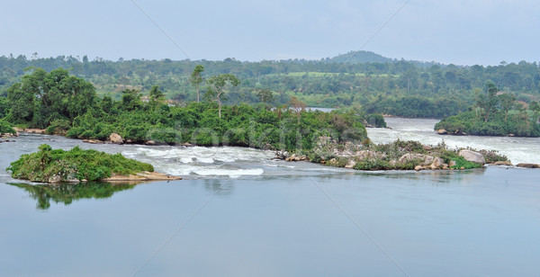 River Nile scenery near Jinja in Africa Stock photo © prill