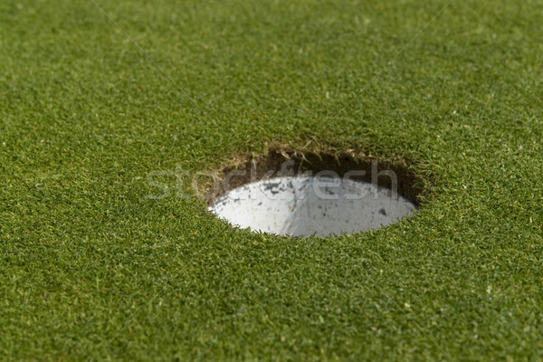 golf hole closeup Stock photo © prill