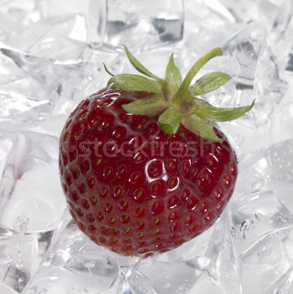 red strawberry on ice Stock photo © prill