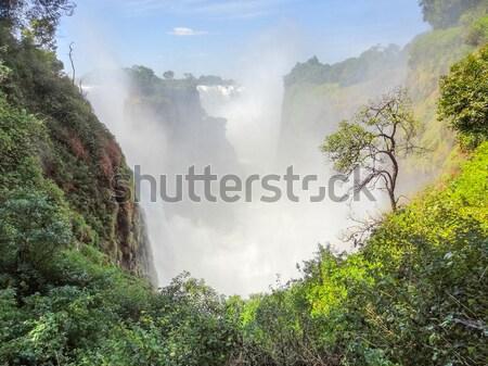 ジンバブエ アフリカ 自然 岩 滝 川 ストックフォト © prill