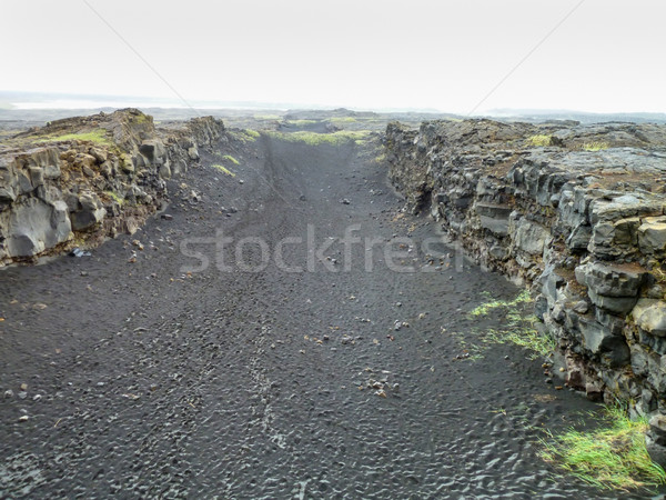 Tájkép Izland elhagyatott természetes fű természet Stock fotó © prill
