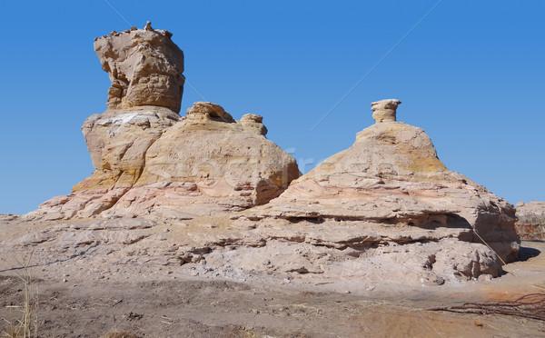 Kaya oluşumu deve manzara taş hayvan Stok fotoğraf © prill