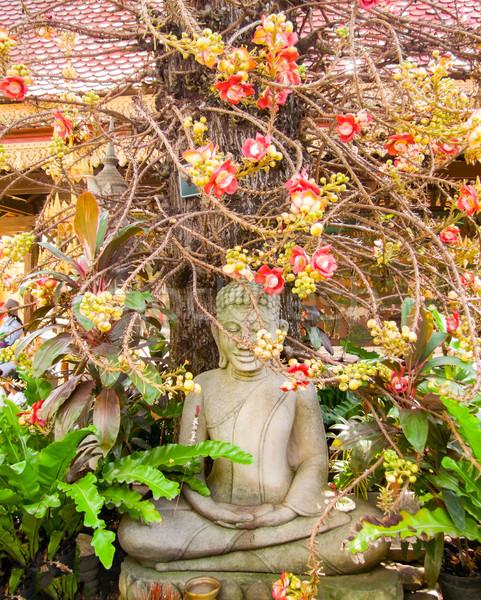 Buddha növény szobor művészet Ázsia vallás Stock fotó © prill