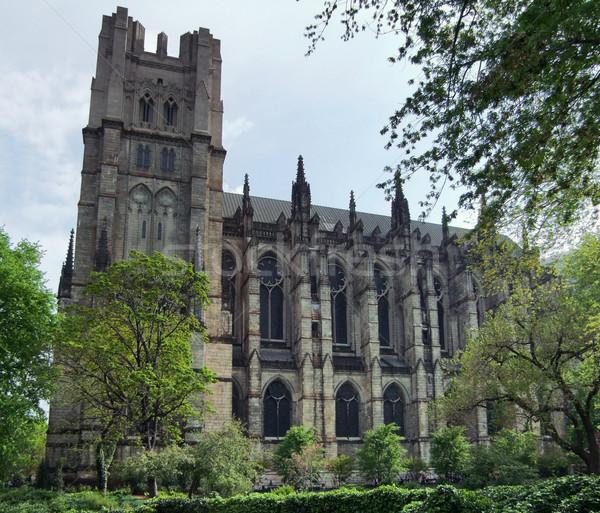 Katedry Nowy Jork święty boski USA drzewo Zdjęcia stock © prill