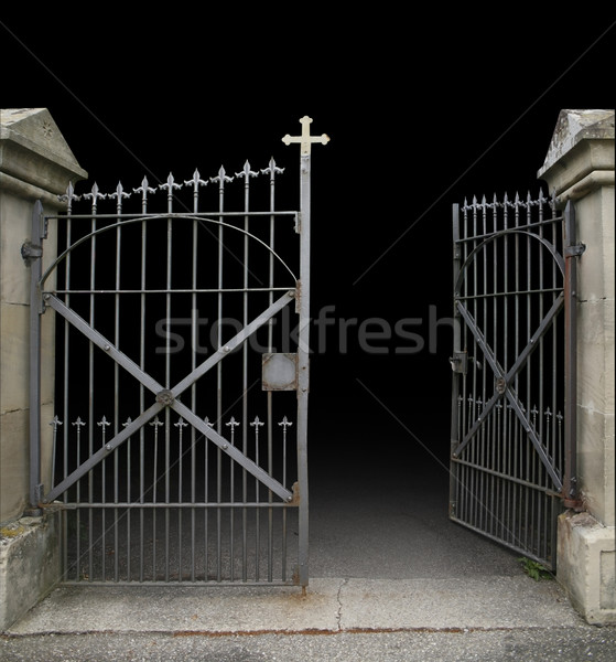 wrought-iron gate Stock photo © prill