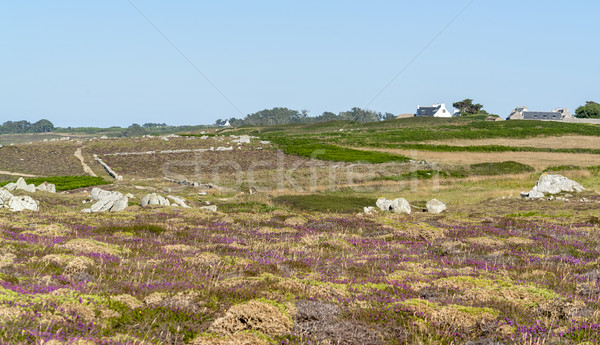 Pointe du Van in Brittany Stock photo © prill