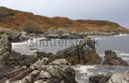 great colored rocky coast in Scotland Stock photo © prill