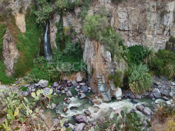 Vegetatie canyon detail Peru water Stockfoto © prill