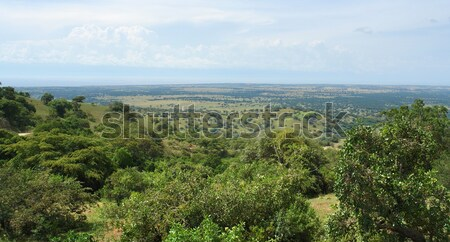 Great Rift Valley in Africa Stock photo © prill