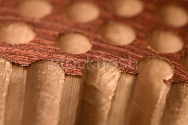 porous wood detail Stock photo © prill