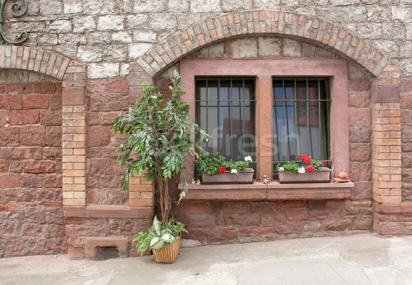 Idyllisch detail bloem gebouw muur Stockfoto © prill
