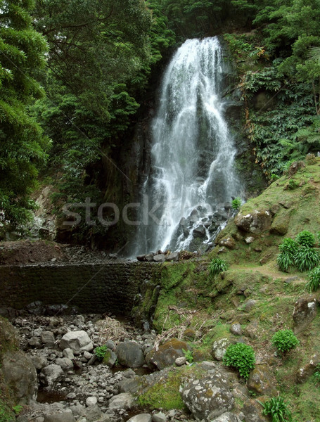 waterfall at Sao Miguel Island Stock photo © prill