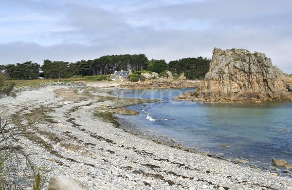 Pembe granit sahil yaz manzara plaj Stok fotoğraf © prill